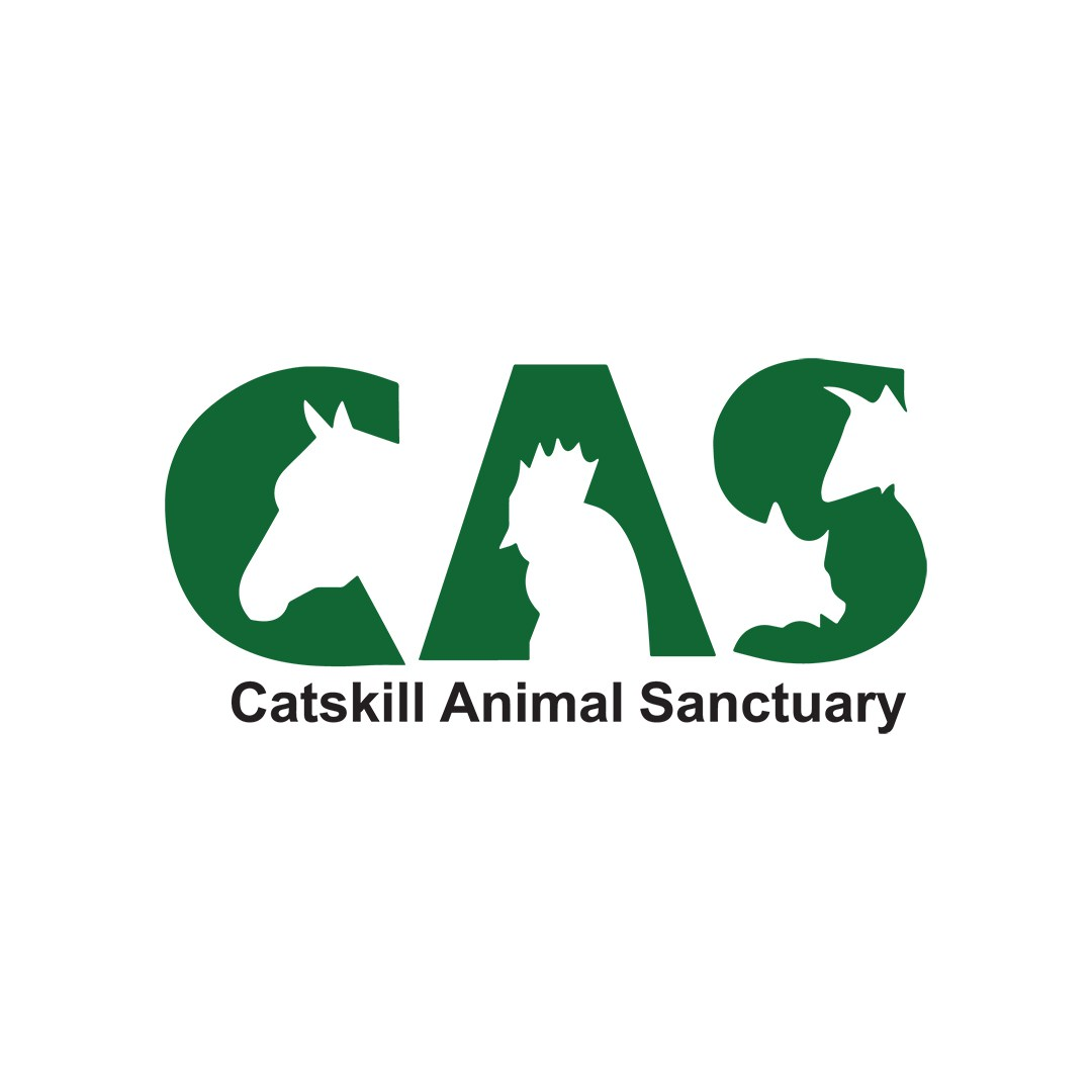 Catskill Animal Sanctuary by Devon Braunstein