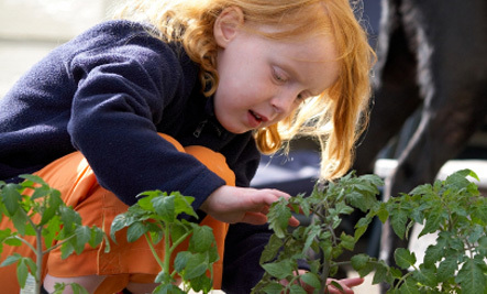 Top 10 Green Tips For Children